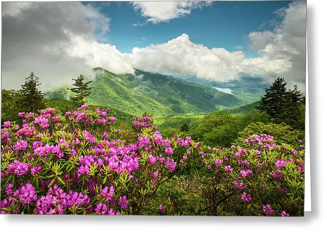 Appalachian Mountains Spring Flowers Scenic Landscape Asheville North Carolina Blue Ridge Parkway Greeting Card