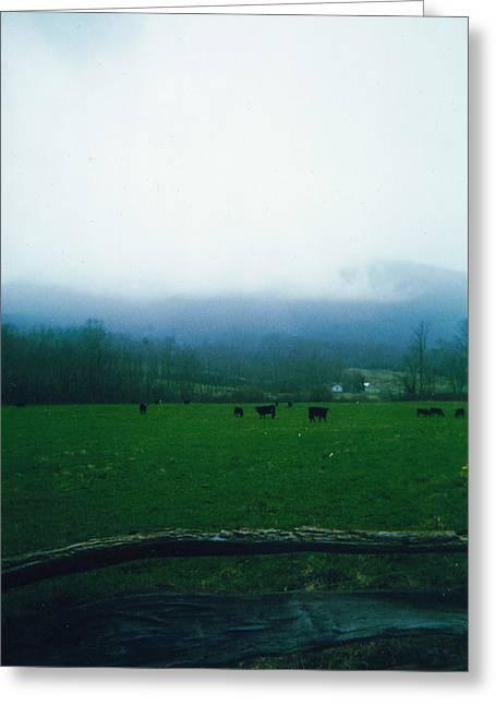 Appalachian Pasture Greeting Card
