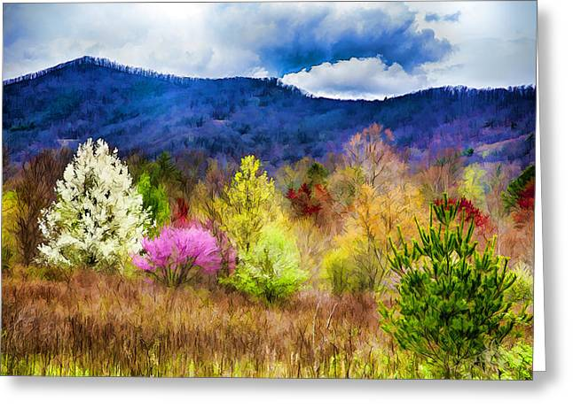 Appalachian Spring In The Holler Greeting Card