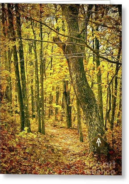 Greeting Card featuring the photograph Appalachian Trail In The Blue Ridge In Autumn Ap by Dan Carmichael