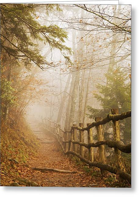 Appalachian Trail Greeting Card