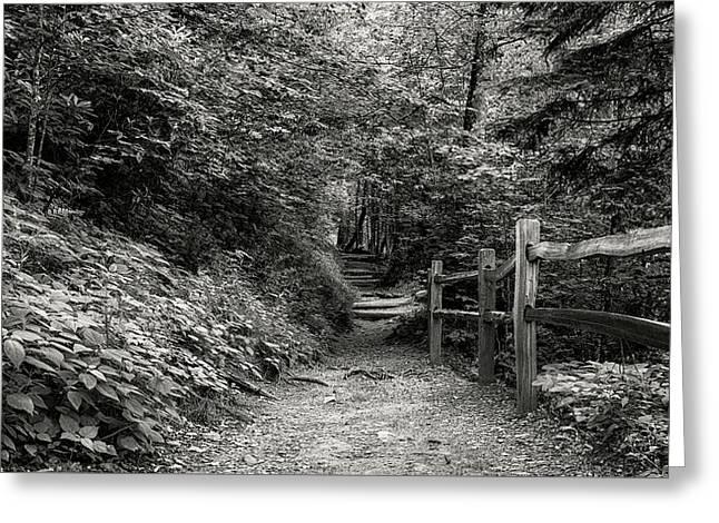 Appalachian Trail Trek Greeting Card by Stephen Stookey