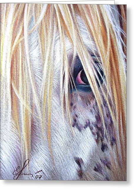 Appaloosa Greeting Card by Elena Kolotusha