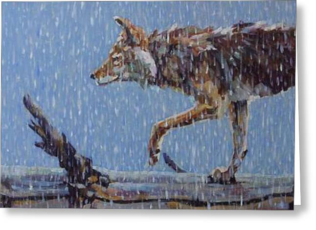 Coyote Art Greeting Cards - Apparition Greeting Card by Patricia A Griffin