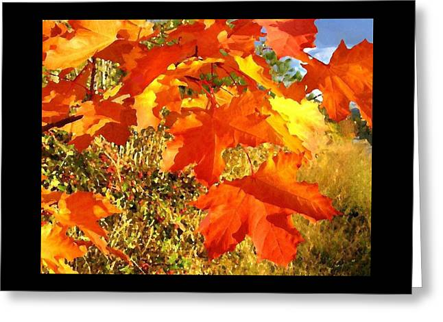 Applause For Autumn Greeting Card by Will Borden