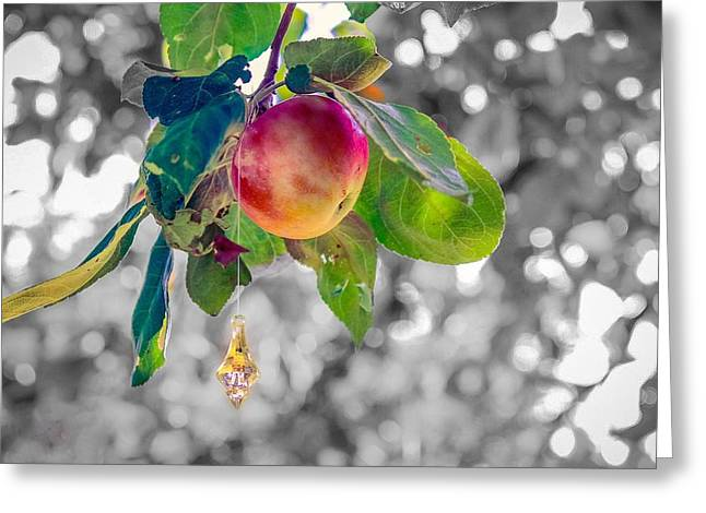 Apple And The Diamond Greeting Card