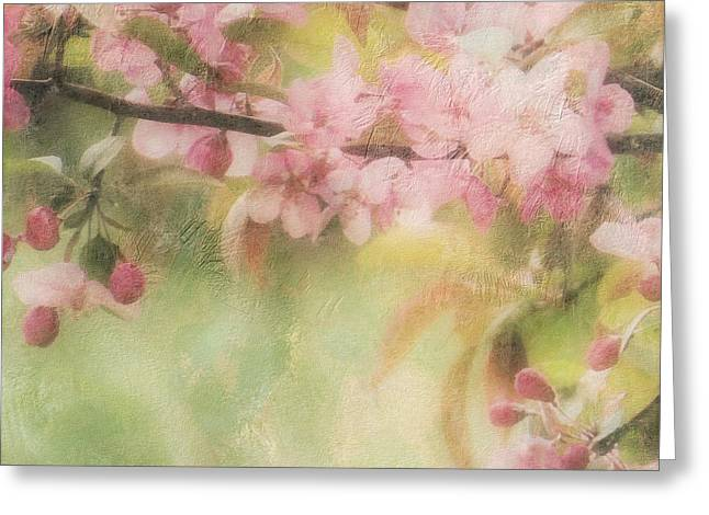Apple Blossom Frost Greeting Card