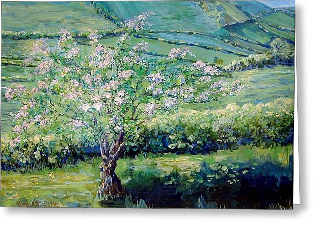 Apple Blossom In The Valley Greeting Card by Wendy Head