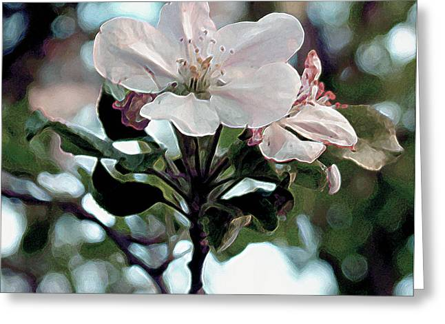 Greeting Card featuring the painting Apple Blossom Time by RC DeWinter