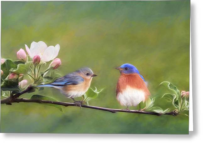 Apple Blossoms And Bluebirds Greeting Card