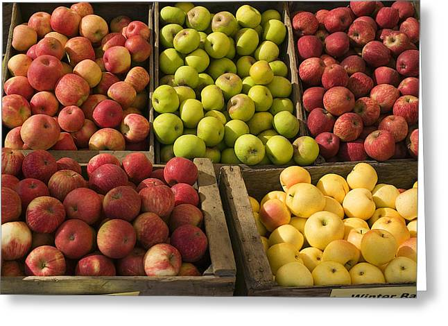 Wooden Box Greeting Cards - Apple Harvest Greeting Card by Garry Gay