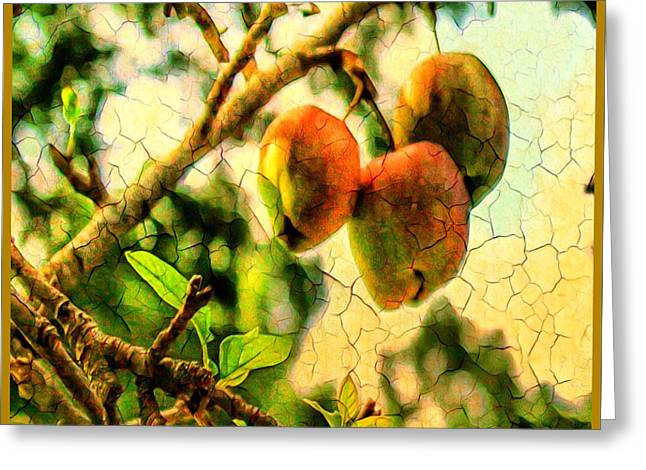 Apple  Season Greeting Card