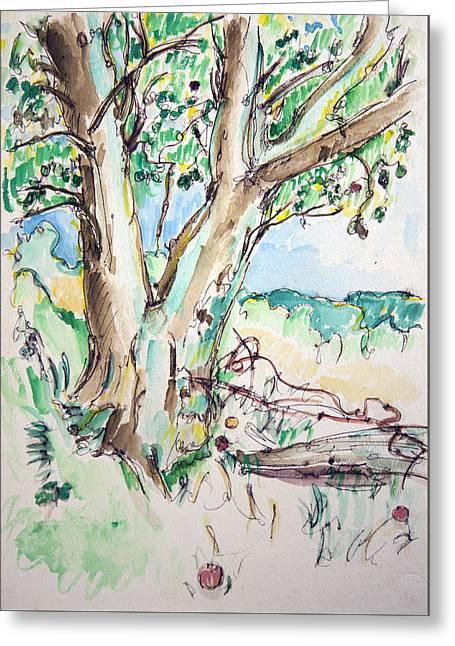 Apple Tree Greeting Card by Rhonda Alexander