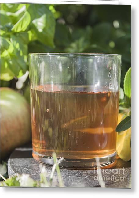 Apple Vinegar Greeting Card by D R