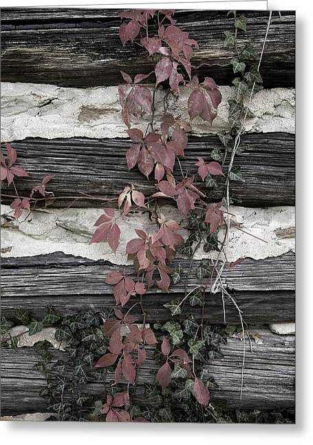 Mountain Cabin Greeting Cards - Appleberry Mountain 2 Greeting Card by Pete Hellmann