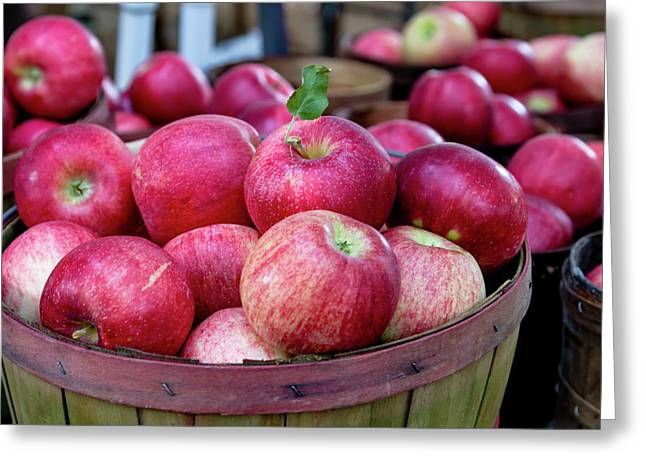 Apples Apples Apples Greeting Card by Teri Virbickis