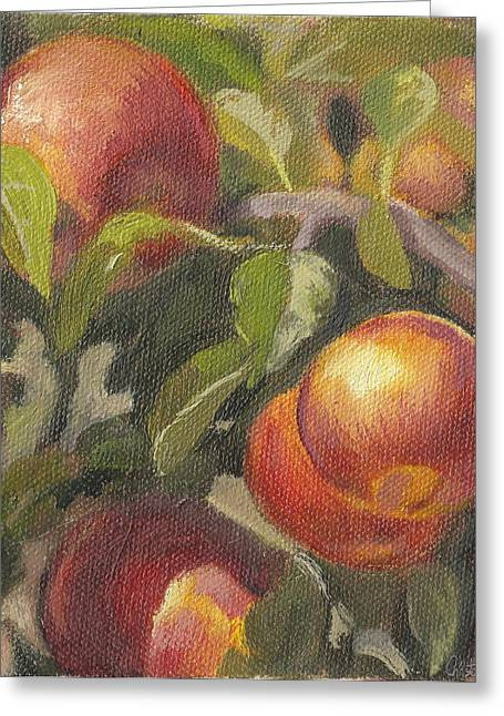 Apples In The Orchard Greeting Card by Christopher James