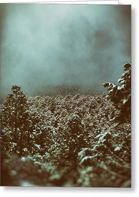 Greeting Card featuring the photograph Approaching Storm by Jason Coward