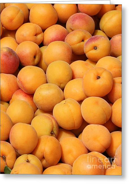 European Markets Greeting Cards - Apricots Greeting Card by Carol Groenen