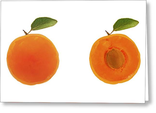 Apricots Greeting Card by Lisa Weedn