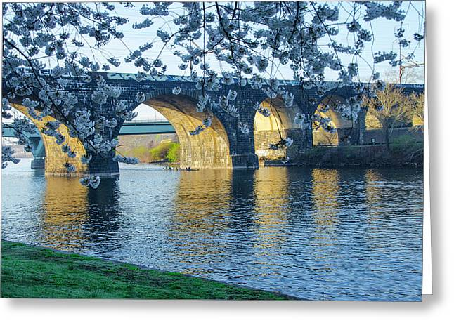 April In Philadelphia Along The Schuylkill River Greeting Card by Bill Cannon