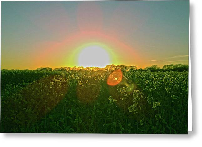 Greeting Card featuring the photograph April Sunrise by Anne Kotan