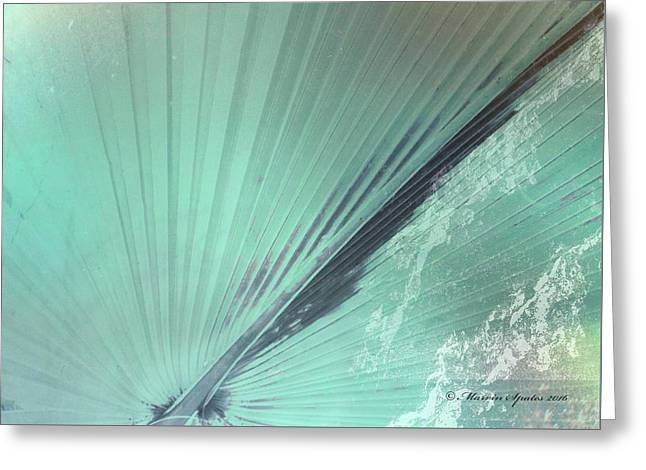 Aqua Palm Frond Rh Greeting Card