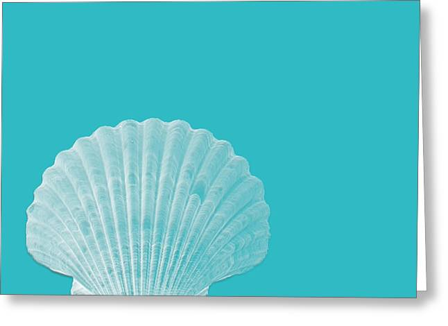 Aqua Shell Greeting Card by Bonnie Bruno