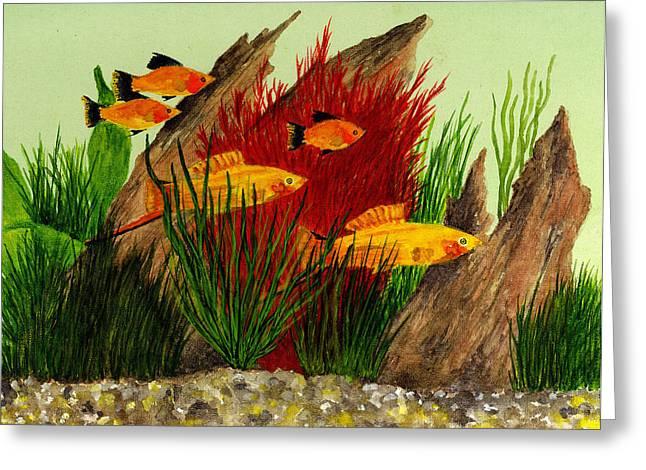 Aquarium Fish Paintings Greeting Cards - Aquarium Fish Greeting Card by Michael Vigliotti