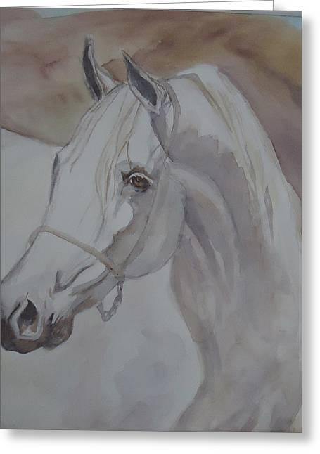 Arab Stallion In The Desert Greeting Card