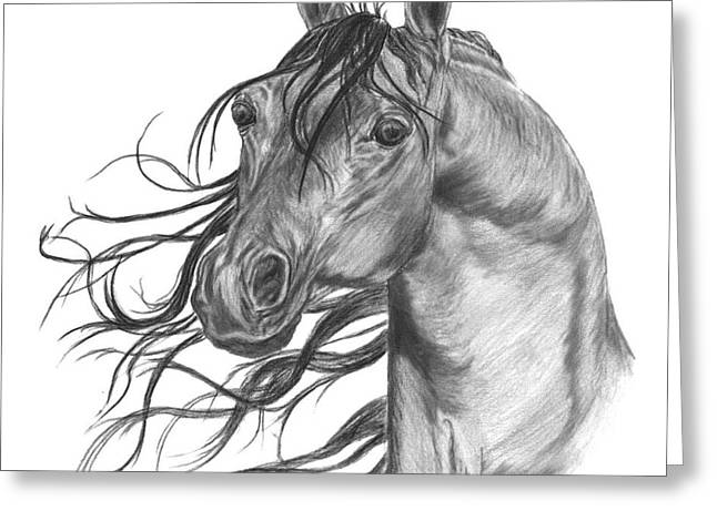 Arabian Head Greeting Card by Gail Finger