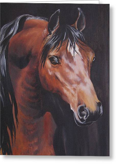 Arabian Horse 1 Greeting Card