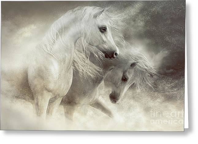 Arabian Horses Sandstorm Greeting Card by Shanina Conway