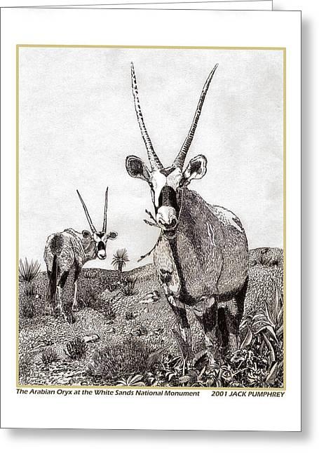 Arabian Orax Greeting Card