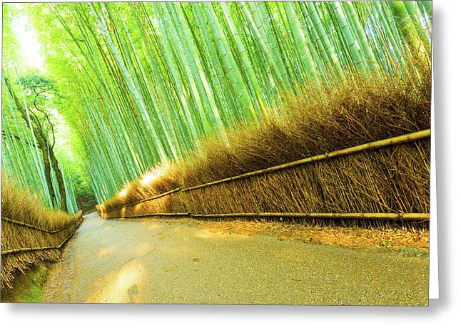 Arashiyama Bamboo Forest Road Grass Fence Tilted Greeting Card