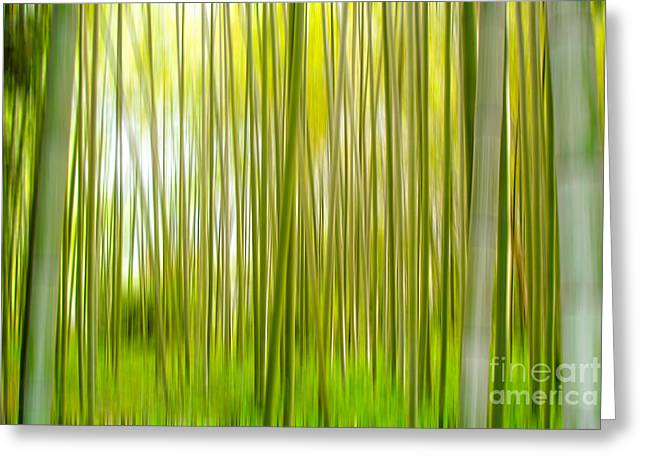Arashiyama Greeting Card by Delphimages Photo Creations