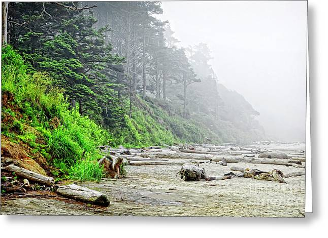 Arcadia Beach In Morning Fog Greeting Card by Lincoln Rogers