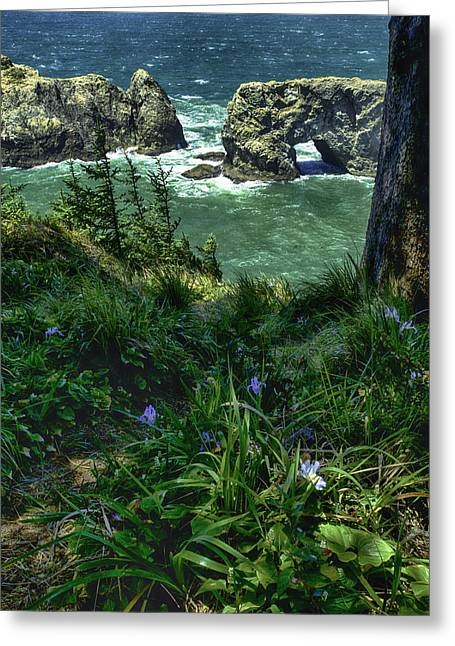 Arch Rock Delight Greeting Card by Rob Wilson