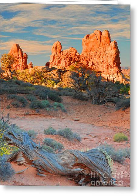 Arches Vista Greeting Card by Dennis Hammer