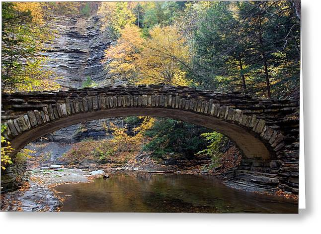 Archway To Autumn Greeting Card by Timothy McIntyre