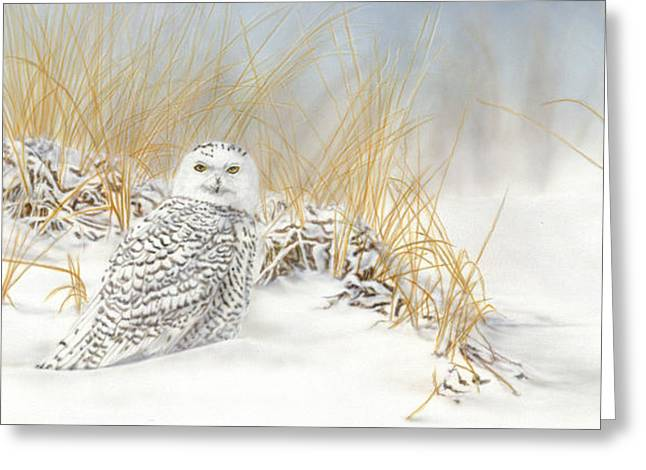 Are You Coming Or What? Greeting Card by Wayne Pruse