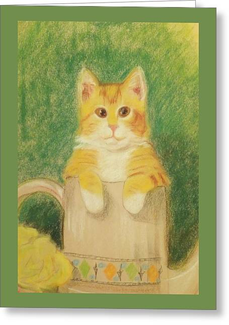 Greeting Card featuring the drawing Are You Sure It's Ok To Be In Here? by Denise Fulmer