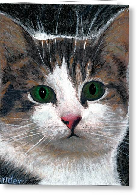 American Shorthair Greeting Cards - Are you talking to me Greeting Card by Brent Ander