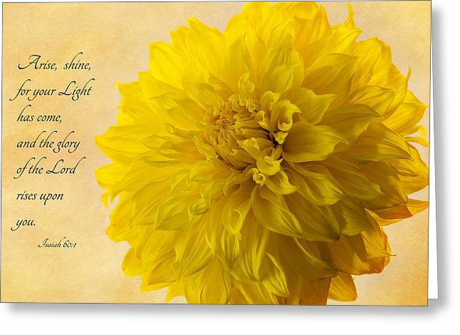 Arise, Shine Greeting Card by Mary Jo Allen