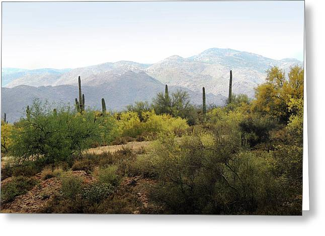 Greeting Card featuring the photograph Arizona Back Country by Gordon Beck