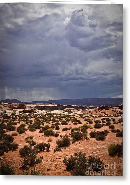 Arizona Rainy Desert Landscape Greeting Card by Ryan Kelly