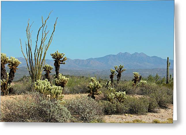 Giclee Cactus Greeting Cards - Arizona Scenic III Greeting Card by Suzanne Gaff