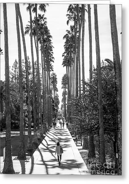 Arizona State University Palm Walk Greeting Card by University Icons