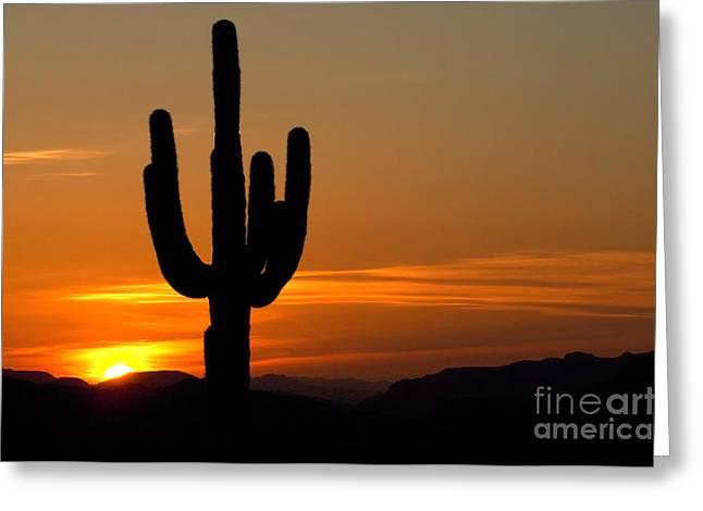 Arizona Sunset 3 Greeting Card by Bob Christopher