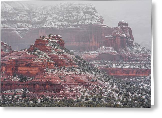 Arizona Winter Greeting Card